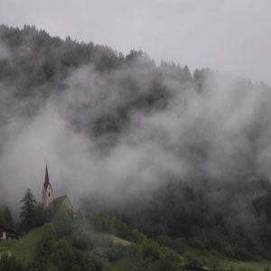 schellen-sau-2010-08