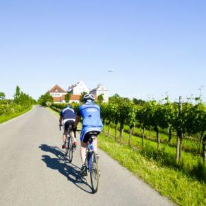 schellen-sau-tour2012-092
